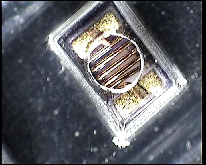 Video Video Zoom Microscope
